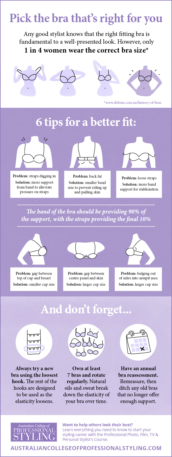 Professional styling bra fitting infographic